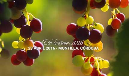 Tecnovino Ecoracimo 2016 concurso de vinos ecologicos 2