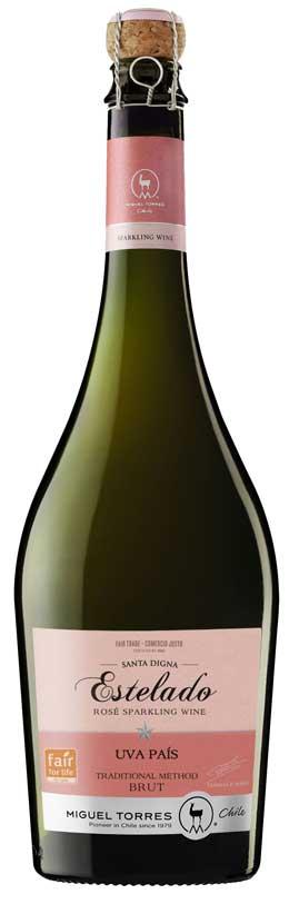 Tecnovino Miguel Torres Chile vinos Estelado