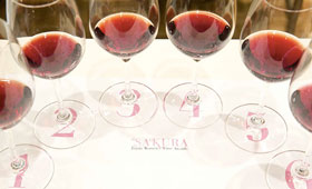 Tecnovino vinos espanoles Sakura 280X170
