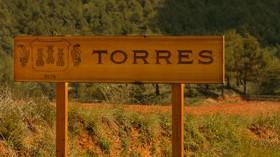 Bodegas Torres cierra 2015 con un aumento del 9,7% en su facturación