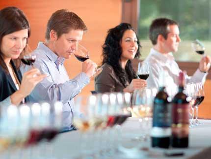 Tecnovino consumidor tipo de vino tesis UR 4