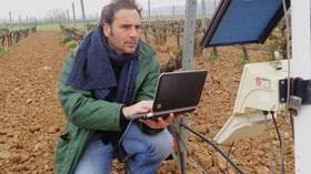 Un estudio sobre los viñedos de regadío extremeños y su calidad