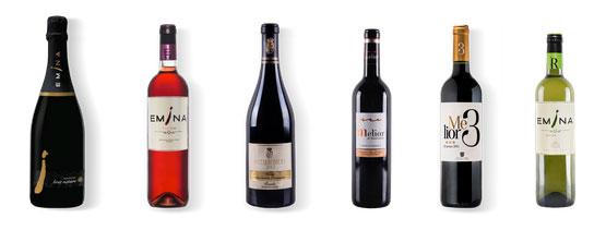 Tecnovino Wanawine Vinos tintos blancos
