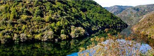 Tecnovino Ponte da Boga paisaje