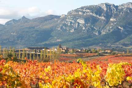 Tecnovino arte deposito de vino Solar de Samaniego 3