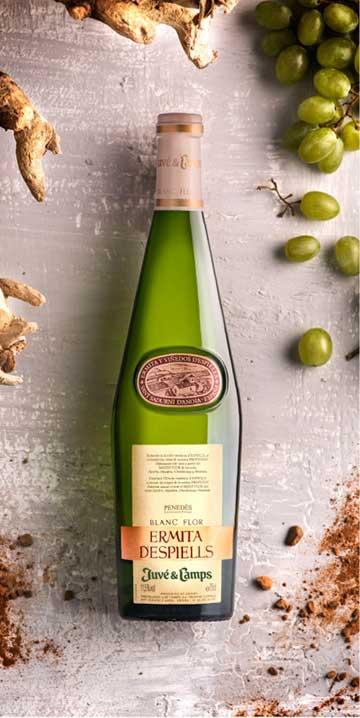 Tecnovino linea vinos ecologicos Juve Camps Ermita