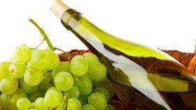Un proyecto que aumentará la vida la útil de los vinos blancos un 40%