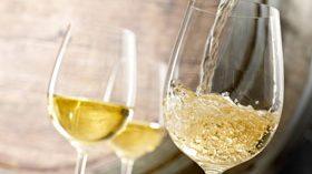Refuerzan el potencial de los vinos blancos de Rioja con una campaña