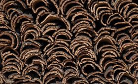 Tecnovino concurso para emprendedores corcho Amorim 280x170