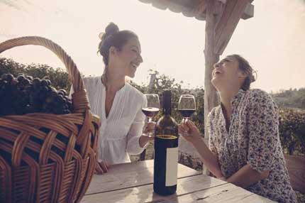 Tecnovino comprar vino Movimiento Vino DO 2