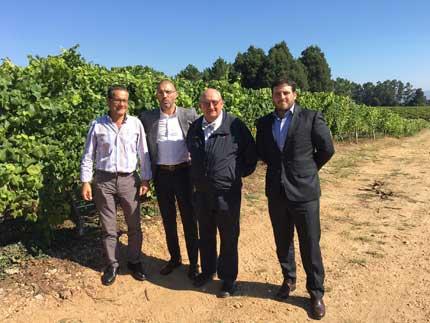 Tecnovino Terras Gauda viticultura sostenible