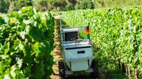 Se presenta el segundo prototipo de VineRobot, un robot para el viñedo