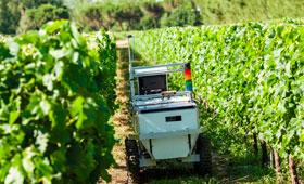 Tecnovino robot para el vinedo Vinerobot 280x170
