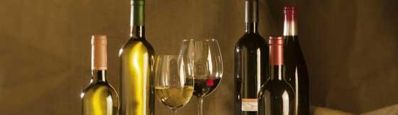 Tecnovino vinos de Cantabria Turismo de Cantabria