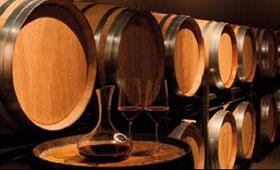 Tecnovino Lagar de Bornos Rioja Alavesa 280x170
