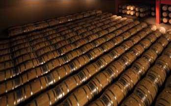 Tecnovino Lagar de Bornos Rioja Alavesa