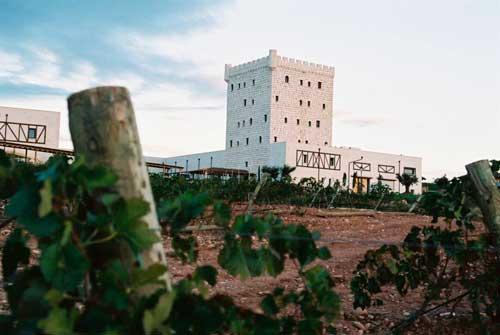 Tecnovino hoteles para hacer enoturismo Espana Pago de Cirsus 1