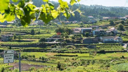 Tecnovino hoteles para hacer enoturismo Espana Quinta de San Amaro 1
