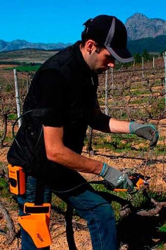 Tecnovino tijeras de poda para vina Vinion Pellenc 2