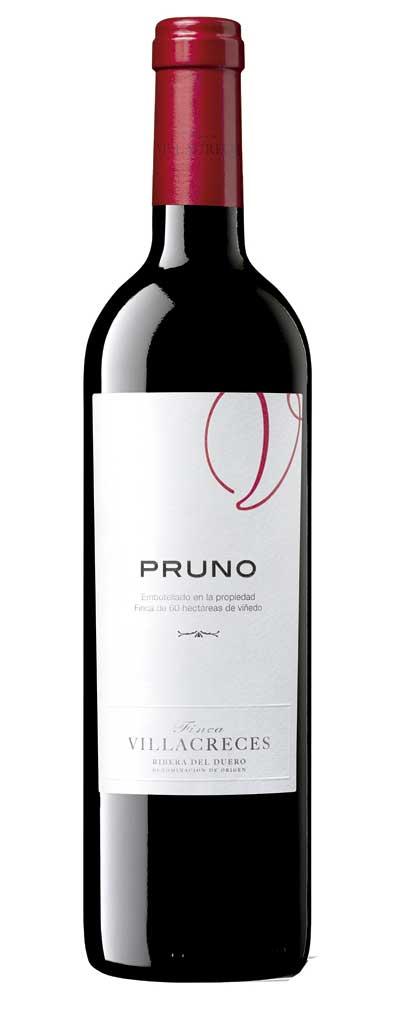 Tecnovino vino Pruno Finca Villacreces