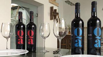 Quadis, los nuevos vinos de Bodegas Barbadillo