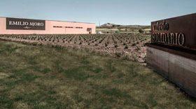Emilio Moro desembarca en El Bierzo y ya trabaja en un vino blanco de Godello