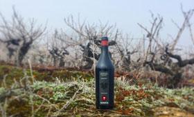 Tecnovino Demencia vino de edicion limitada 280
