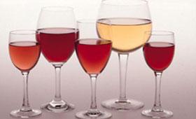 Tecnovino jornadas vitivinicolas DO Navarra 280