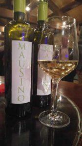 Tecnovino vino experimental Mausino Vina Moraima 2