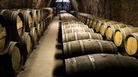 El consumo interno de vino, estable durante la campaña 2015/2016