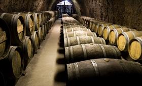 Balance vitivinícola