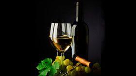 El foro Wine and Health se centró en los beneficios del vino sobre la salud