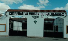 Tecnovino Dcoop Baco Virgen de Palomares 280