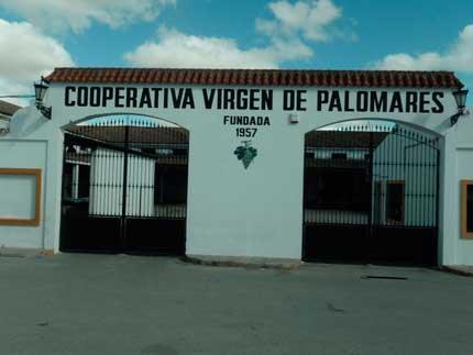 Tecnovino Dcoop Baco Virgen de Palomares