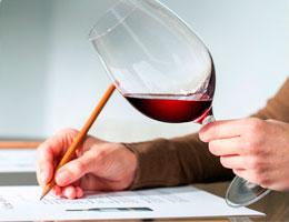 Tecnovino oferta formativa online en vino de ESAH cata de vinos