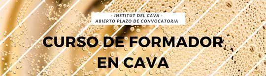 Tecnovino Formador en Cava cursos Institut del Cava 1