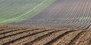 Se modifica la normativa sobre comercialización de determinados medios de defensa fitosanitaria