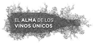 Tecnovino eventos vitivinicolas El Alma de los Vinos Unicos