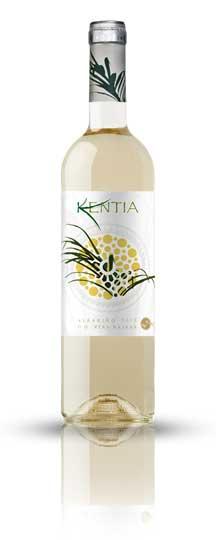 Tecnovino vino Kentia albarino Juan Gil