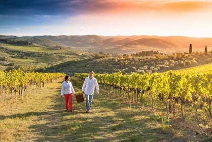 Tecnovino enoturismo Turismo de Vino