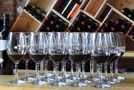 Tecnovino sostenibilidad vitivinicola Life Priorat Montsant 2