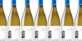 Estévez presenta la nueva añada de su vino Ojo de Gallo, su especial blanco monovarietal de palomino fino