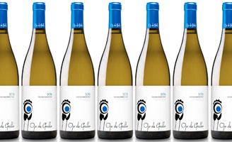 Tecnovino vino Ojo de Gallo Jose Estevez 328x200