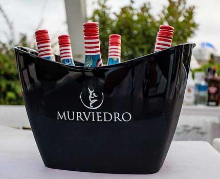 Tecnovino Bodegas Murviedro vinos