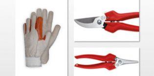 Tijeras y guantes que ayudan en el trabajo de vendimia