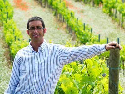 Tecnovino sector vitivinicola Jorge Navascues