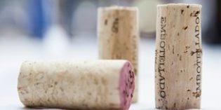 Segunda edición del concurso internacional Rioja Wine & Tapas