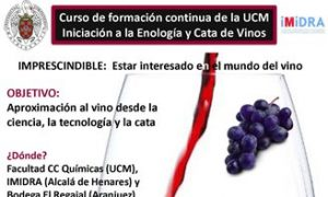 La Universidad Complutense de Madrid organiza en septiembre un curso de iniciación a la enología