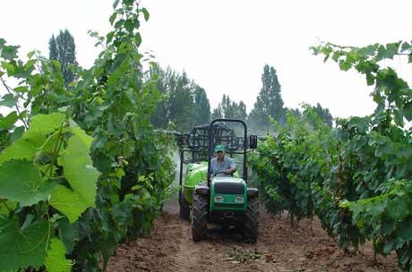 Tecnovino Plan Renove de maquinaria agricola Mapama