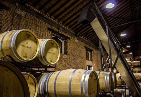 Tecnovino Barcolobo vinos de Castilla y Leon 1